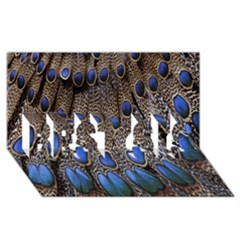 Feathers Peacock Light Best Sis 3d Greeting Card (8x4) by AnjaniArt