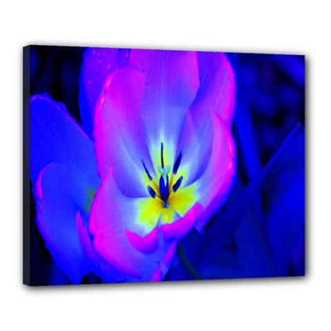 Blue And Purple Flowers Canvas 20  X 16  by AnjaniArt