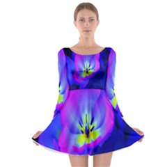 Blue And Purple Flowers Long Sleeve Skater Dress