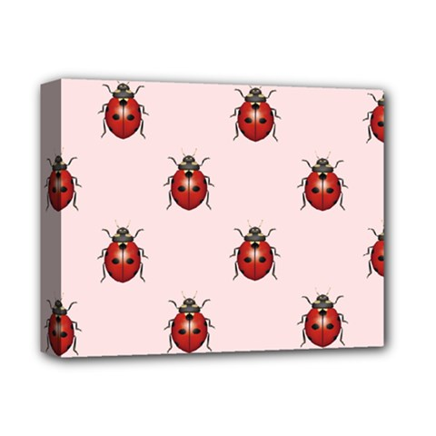 Insect Animals Cute Deluxe Canvas 14  X 11