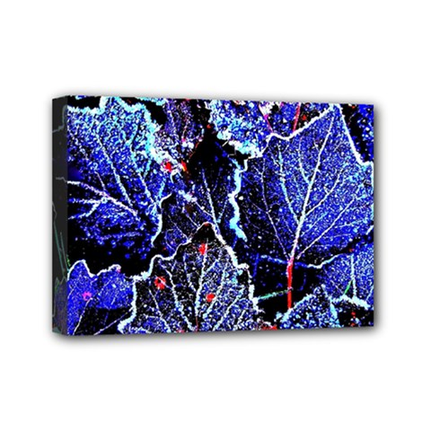 Blue Leaves In Morning Dew Mini Canvas 7  X 5