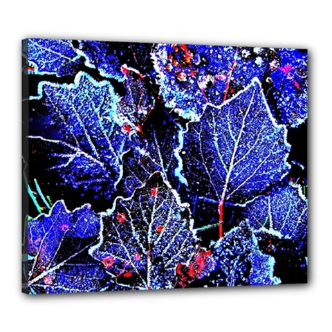 Blue Leaves In Morning Dew Canvas 24  X 20