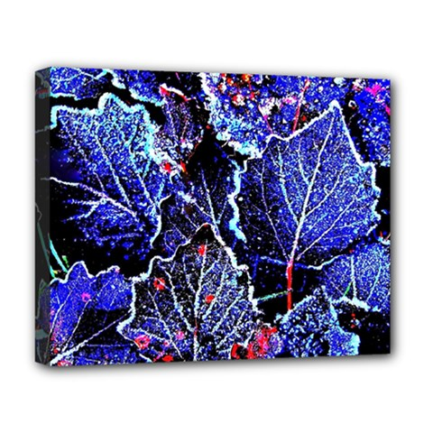 Blue Leaves In Morning Dew Deluxe Canvas 20  X 16   by Costasonlineshop