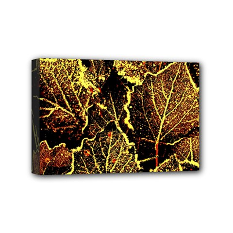 Leaves In Morning Dew,yellow Brown,red, Mini Canvas 6  X 4
