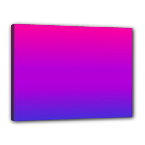 Pink Purple Blue Canvas 16  X 12  by AnjaniArt
