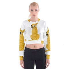 Yellow cat Women s Cropped Sweatshirt