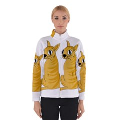 Yellow cat Winterwear