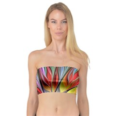 Fractal Bird Of Paradise Bandeau Top by WolfepawFractals
