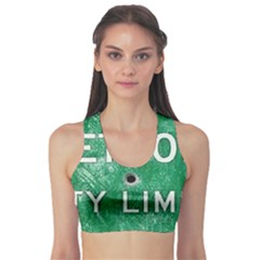 Detroit City Limits Sports Bra
