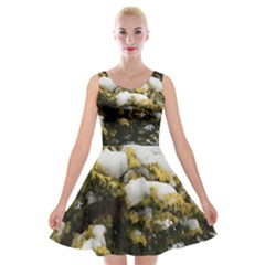 Green Bush With Snow Lush Velvet Skater Dress by SusanFranzblau