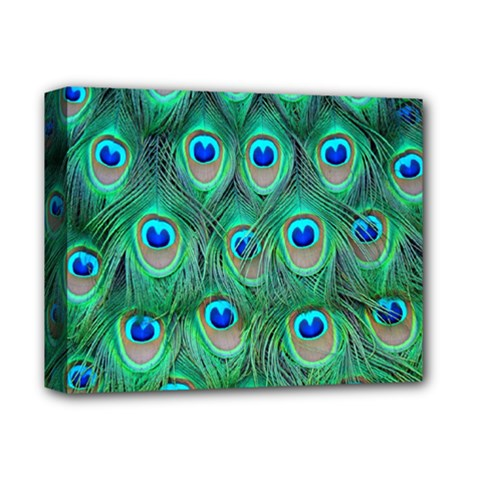 Peacock Feather Deluxe Canvas 14  X 11  by Jojostore