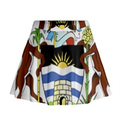 Coat Of Arms Of Antigua And Barbuda Mini Flare Skirt by abbeyz71