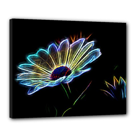 Flower Pattern Design Abstract Background Canvas 20  X 16