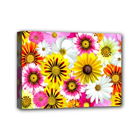 Flowers Blossom Bloom Nature Plant Mini Canvas 7  X 5  by Amaryn4rt