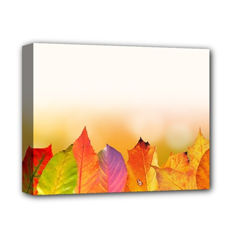 Autumn Leaves Colorful Fall Foliage Deluxe Canvas 14  X 11  by Amaryn4rt