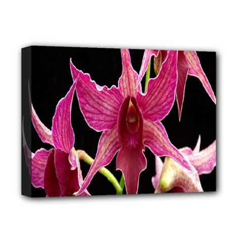 Orchid Flower Branch Pink Exotic Black Deluxe Canvas 16  X 12   by Jojostore