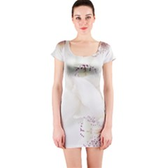 Orchids Flowers White Background Short Sleeve Bodycon Dress