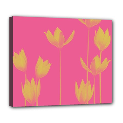 Flower Yellow Pink Deluxe Canvas 24  X 20   by Jojostore