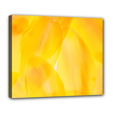 Yellow Pattern Painting Deluxe Canvas 24  X 20