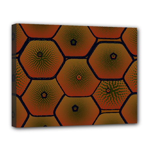 Art Psychedelic Pattern Canvas 14  X 11  by Amaryn4rt