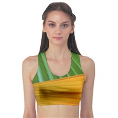 Pattern Colorful Palm Leaves Sports Bra