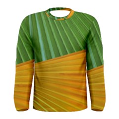 Pattern Colorful Palm Leaves Men s Long Sleeve Tee