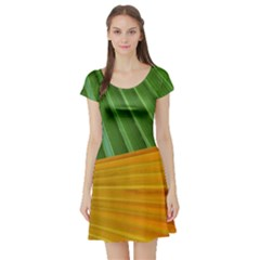 Pattern Colorful Palm Leaves Short Sleeve Skater Dress
