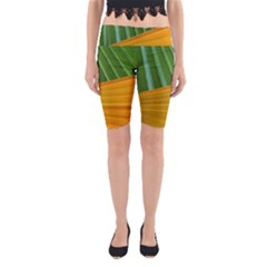 Pattern Colorful Palm Leaves Yoga Cropped Leggings