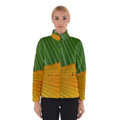 Pattern Colorful Palm Leaves Winterwear