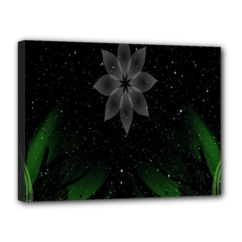 Night Sky Flower Canvas 16  X 12