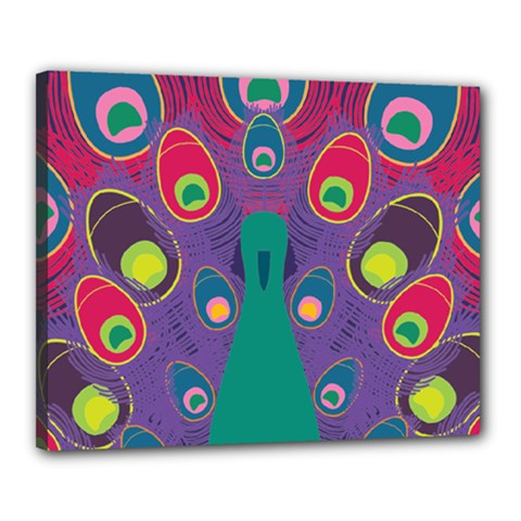 Colorful Peacock Line Canvas 20  X 16