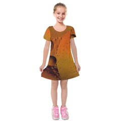 Abstraction Color Closeup The Rays Kids  Short Sleeve Velvet Dress