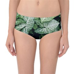 Green Leaves Nature Pattern Plant Mid-waist Bikini Bottoms by Amaryn4rt