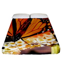 Monarch Butterfly Nature Orange Fitted Sheet (king Size) by Amaryn4rt