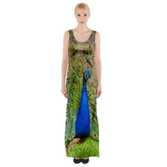 Peacock Animal Photography Beautiful Maxi Thigh Split Dress by Amaryn4rt