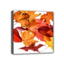 Autumn Leaves Leaf Transparent Mini Canvas 4  x 4  View1