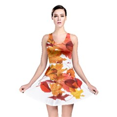 Autumn Leaves Leaf Transparent Reversible Skater Dress by Amaryn4rt