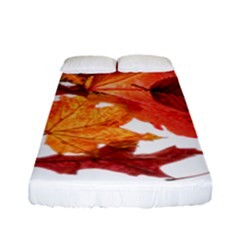 Autumn Leaves Leaf Transparent Fitted Sheet (full/ Double Size) by Amaryn4rt