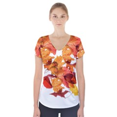 Autumn Leaves Leaf Transparent Short Sleeve Front Detail Top by Amaryn4rt