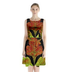 Autumn Beauty Sleeveless Chiffon Waist Tie Dress by Nexatart