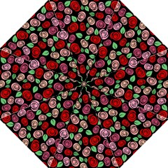 Red And Pink Roses Hook Handle Umbrellas (large) by Valentinaart
