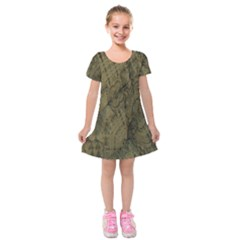 Complexity Kids  Short Sleeve Velvet Dress