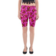 Dahlia Flowers Pink Garden Plant Yoga Cropped Leggings