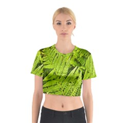 Fern Nature Green Plant Cotton Crop Top by Nexatart