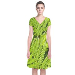 Fern Nature Green Plant Short Sleeve Front Wrap Dress
