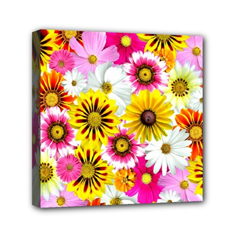 Flowers Blossom Bloom Nature Plant Mini Canvas 6  X 6