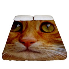 Cat Red Cute Mackerel Tiger Sweet Fitted Sheet (california King Size) by Nexatart