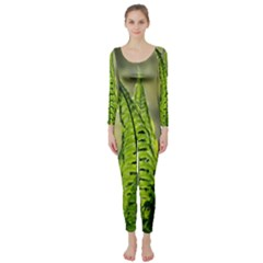 Fern Ferns Green Nature Foliage Long Sleeve Catsuit by Nexatart