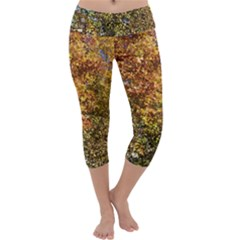 Autumn Tree Capri Yoga Leggings by SusanFranzblau