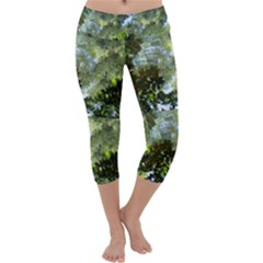 Ripples In Water Capri Yoga Leggings by SusanFranzblau
